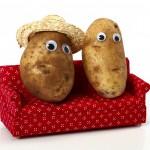 Couch-Potato-Couple