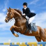 equestrian-jumping-19627565-500x366